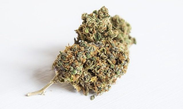 ado et cannabis